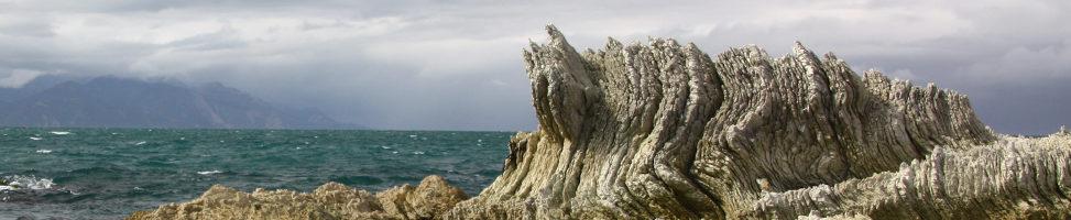 Kaikoura: Von Walen keine Spur