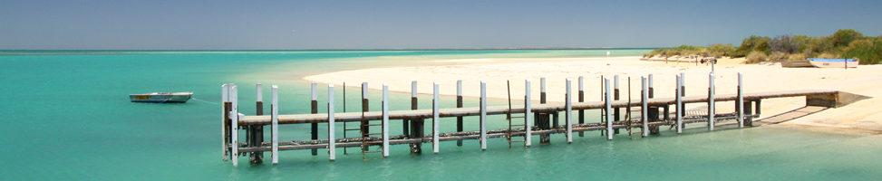 Shark Bay: Erfahrungen, die sprachlos machen