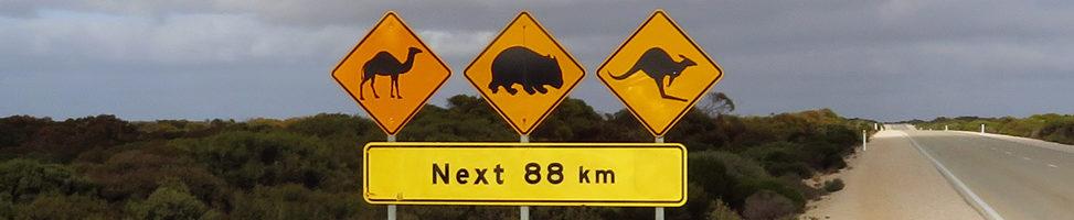 To Do Nr. 12: Tiere auf Schildern